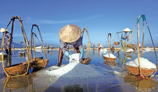 There is no change in well and mineral salt market in Jiangxi Province